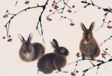 属兔人在2020年12月的运势分析
