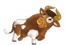 梦见牛说话