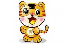 农历十一月出生的属虎人运势分析