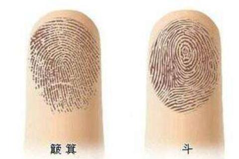 指纹算一个人的命运