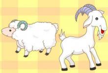 正月属羊人的性格特点