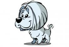 属狗人的最佳合作伙伴是谁?