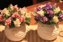 家里摆放花的风水禁忌
