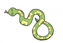 什么蛇是苦命蛇