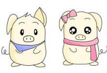 属猪几时生是一等命 属猪的富豪出生时辰