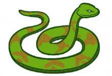 属蛇的人2021年运程分析