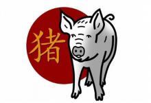 属猪人最佳合作伙伴是谁?