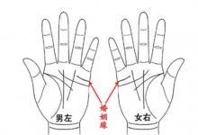 手掌纹路看命运和运势