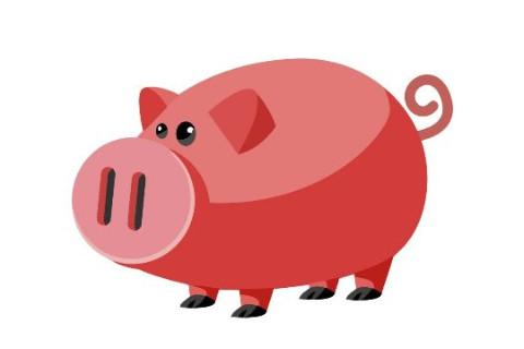 属猪的今年多大?2021年属猪人几岁?