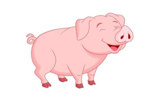 1995年是什么生肖?1995年属猪是什么命?