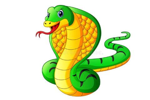属蛇人2021年全年运势