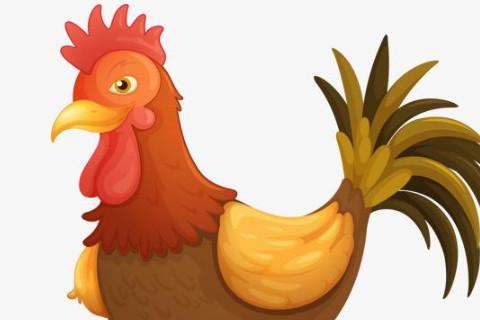 属鸡人2021年全年运势详解 属鸡2021年运势及每月运程