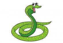 属蛇的本命年运势如何?
