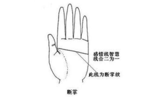 女性右手断掌纹运势怎样?