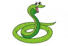 属蛇人的婚姻与命运如何?