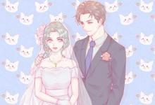 属兔人的婚姻与命运如何?