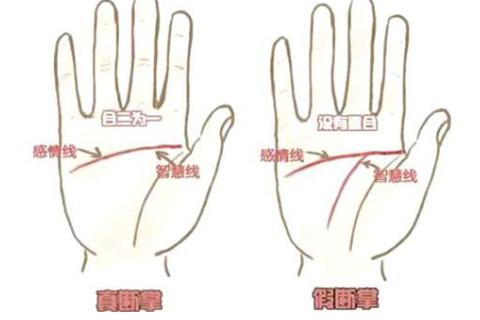 手纹断掌代表了什么?