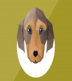 2021年属狗的人刑太岁,需要注意哪些事情和月份?(1961-2021)