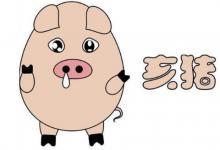 属猪人几点出生的最好?