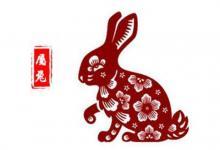 属兔人几点出生的最好?