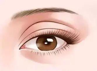 眼睛下方八字痕_右眼睛下眼皮跳怎么回事_眼睛下面八字凹陷图片