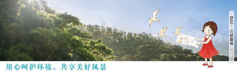 八字点评黄圣依和杨子的恋情
