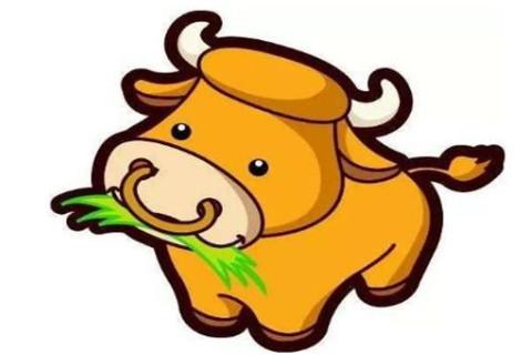 1997年属牛学业运势如何?