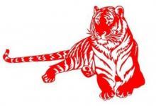2010年属虎人2022年运势及运程 12岁属虎人每月运势解析