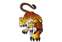 1962年属虎人2022年运势及运程  60岁属虎人每月运势解析