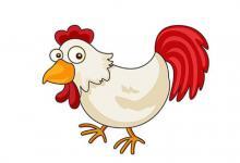 属鸡人客厅挂什么画好 ?