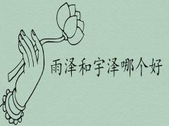雨泽和宇泽哪个含义好泽配什么字取名最佳