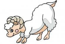 1991年属羊人2022年运势及运程 31岁属羊人每月运势解析