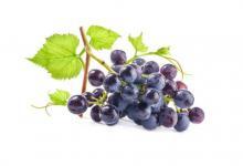 做梦梦到葡萄是什么意思?