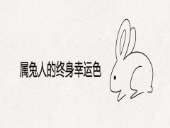 属兔人的终身幸运色
