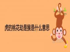 虎的桃花劫是猴是什么意思
