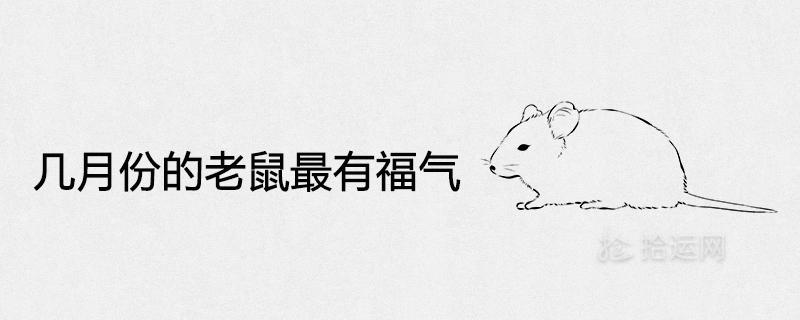 几月份的老鼠最有福气