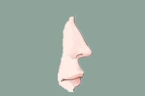 如何通过鼻子看运势?