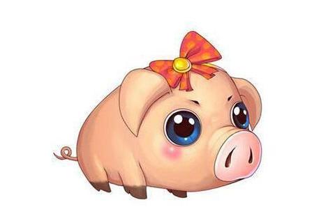 属猪和属猪人合财吗?