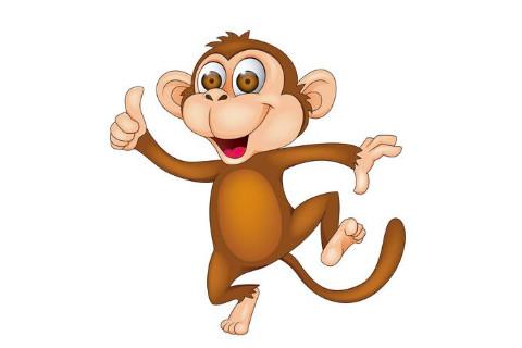 属猴人和同年的人结婚好不好?