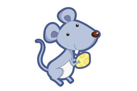 属鼠和属鼠人相配好吗?