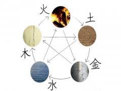 六爻排盘有什么特点?世爻应爻是什么意思?