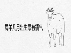 属羊几月出生最有福气