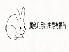 属兔几月出生最有福气