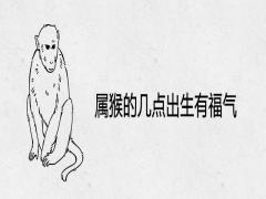属猴的几点出生有福气