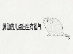 属鼠的几点出生有福气