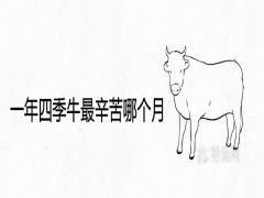 一年四季牛最辛苦哪个月