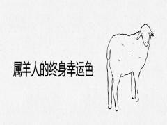 属羊人的终身幸运色