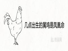 几点出生的属鸡是凤凰命