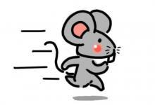 属鼠人的守护神是什么?