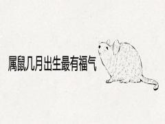 属鼠几月出生最有福气